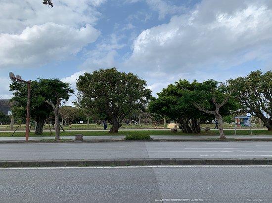 Shintoshin Park