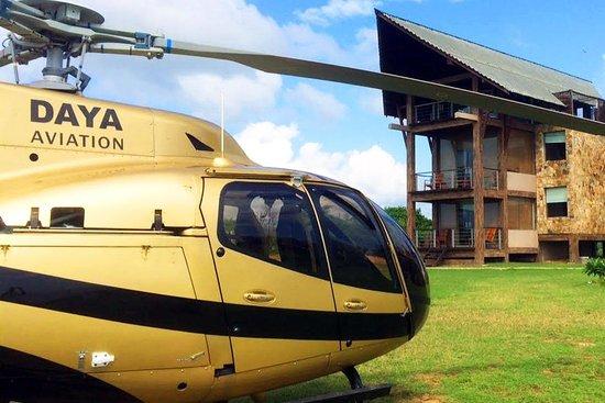 Daya Aviation