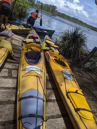 Self-Guided Noosa Everglades Kayak Tour: Our rest stop for lunch