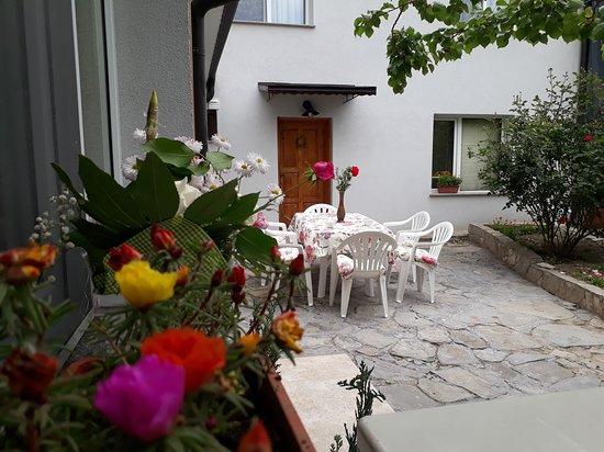 Guest House Sahat Hill: The lovely garden