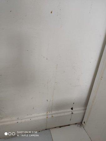 Стены в номере