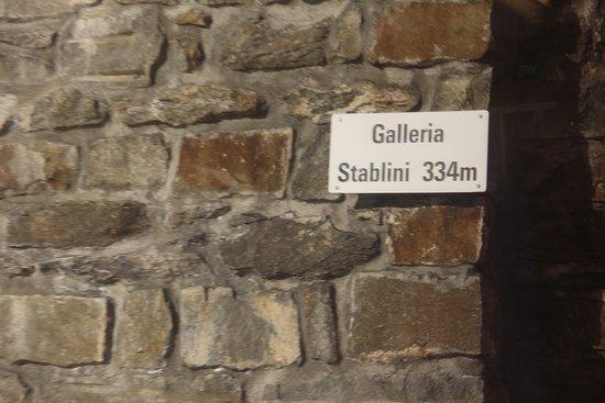 Fantastisk togrejse med Bernina Express fra St Moritz til Tirano: Galería Stablini