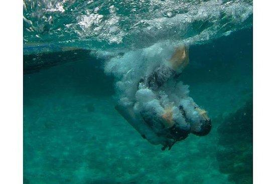 Plongées amusantes pour plongeurs certifiés