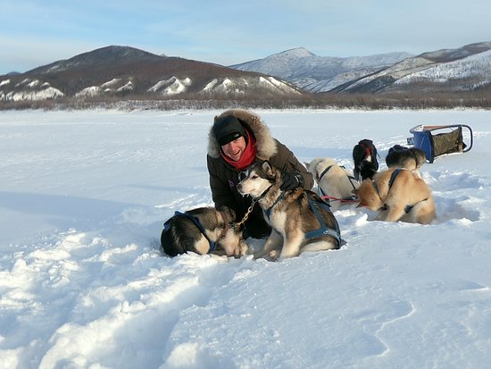 Eagle, AK : Short break for the dogs.... an me.