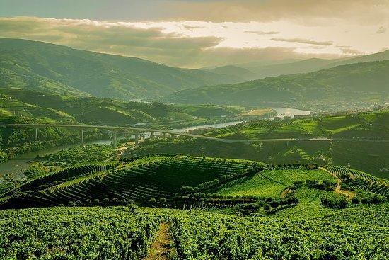 Den sjarmerende Douro Valley Tour Walking Tour