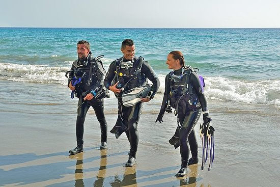 Sydney Guided Shore Dive