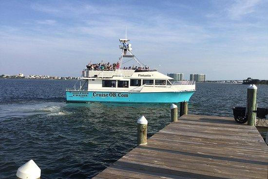 Croisière aux dauphins sur la côte du...