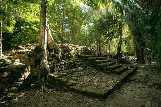 Costa Maya-Landausflug...