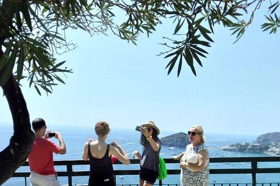 Ischia Private Tagestour von Sorrent