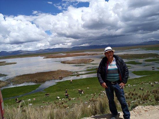 Junin Region, เปรู: Laguna de kistococha