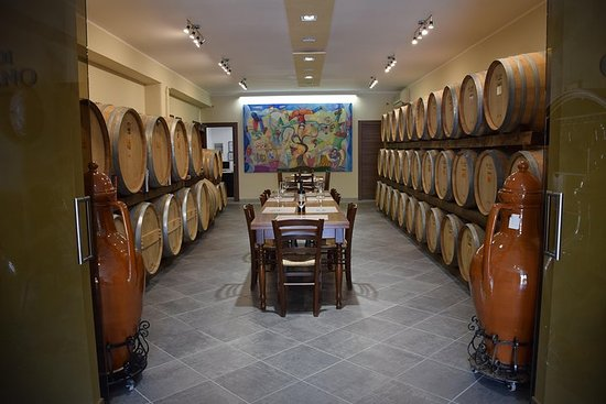 From Lecce: Wine Tour across the Apulian Land of Negramaro