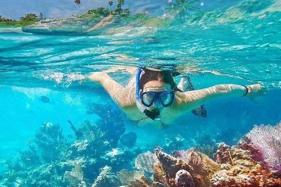 Tudo incluído: mergulho com snorkel em...