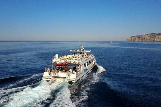 Mallorca Paradise Boat Trip