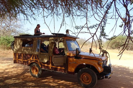 Lofty Tours & Safaris