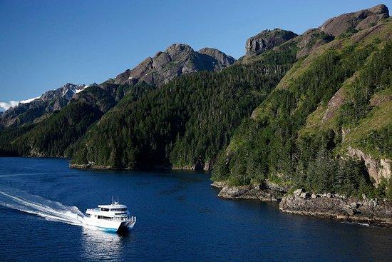 Resurrection Bay Cruise met Fox Island