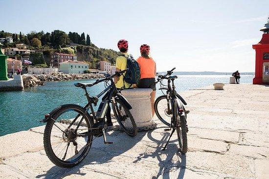 Tour in bicicletta elettrica della costa slovena di Capodistria