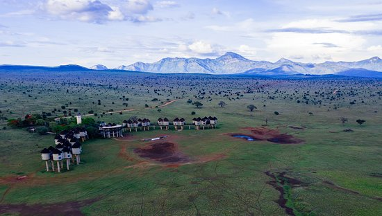 Taveta, Kenia: Salt Lick Game Lodge , one of the lodges in our sanctuary. It is said to be one of the most photographed lodge in the world