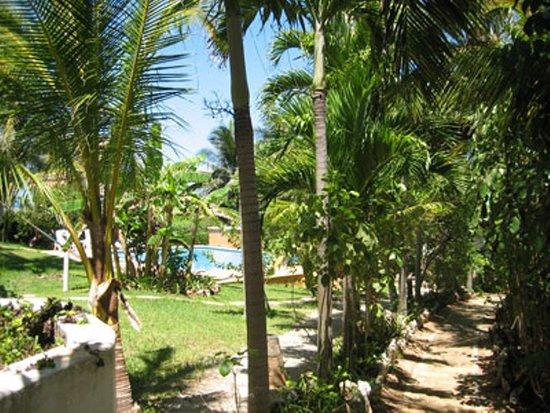 Isla Mujeres, Mexiko: Villas Punta Sur Garden path