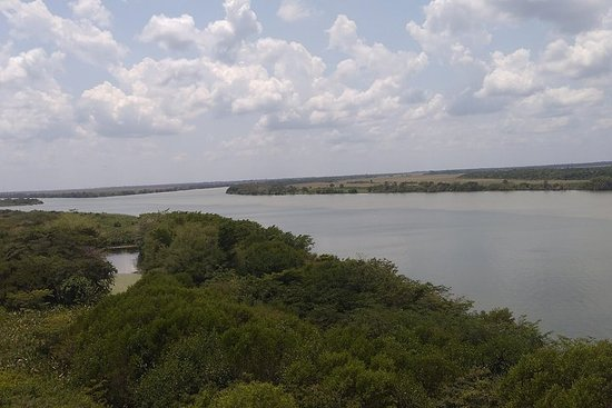 Les zones humides de Centla