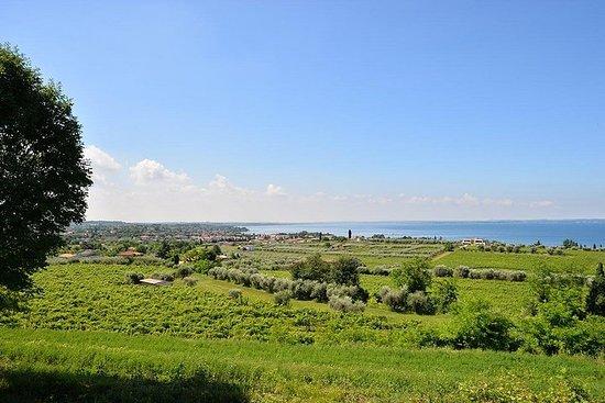 Opdag vinene i Gardasøen
