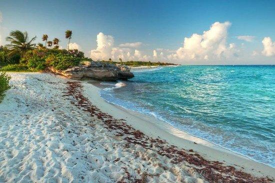 Tours del Caribe