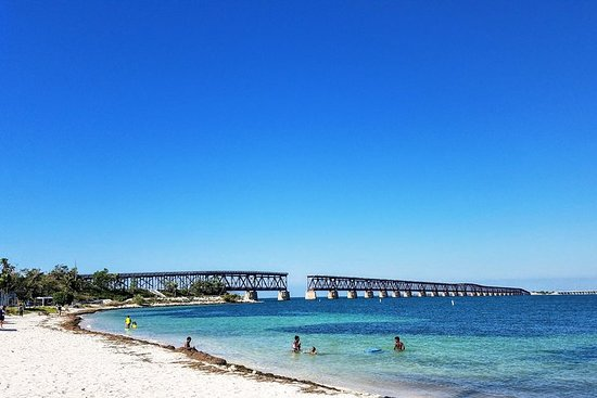 Seven Mile Bridge, Beach, and Key Deer Tour