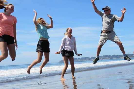 Discover Point Reyes natural wonders and ancient redwoods...