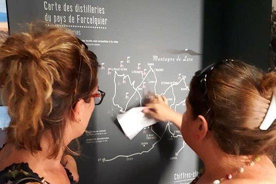 Visit of the Artemisia museum