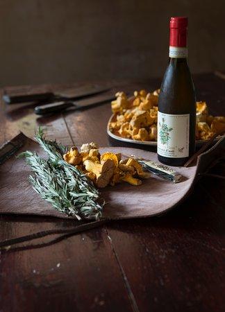 Freshly Foraged Chanterelle Mushrooms