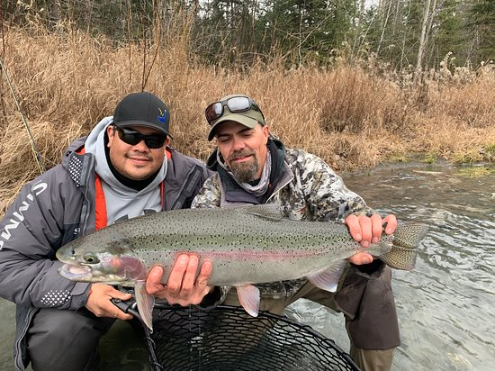 Cooper Landing, AK : Wading the river in fall is as productive as you can get! Monster rainbows await!