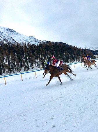 St. Moritz, Switzerland: White Turf 2020