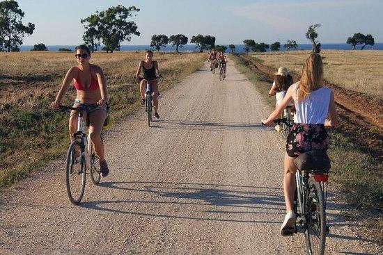 Tour à vélo au coucher du soleil