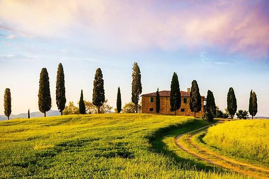 Chianti Luxury Wine & Food Tour in Tuscany-The ultimate all inclusive experience Photo