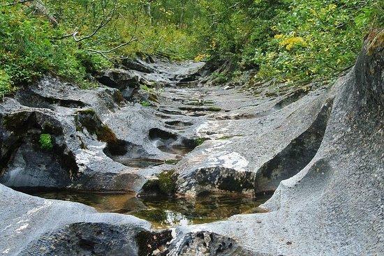 Wandelen door de spectaculaire Bjurälven-vallei Foto