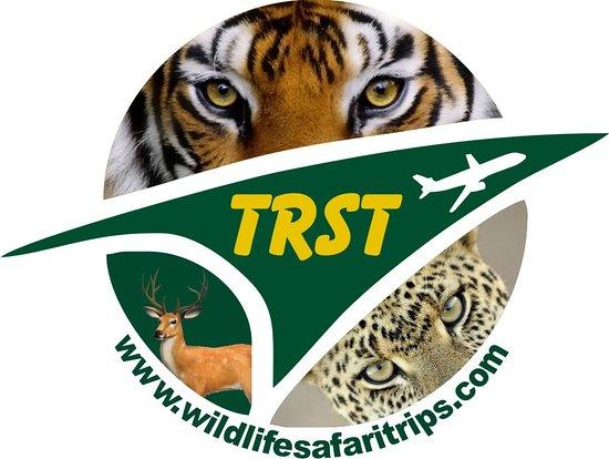 Wild Life Safari Trips