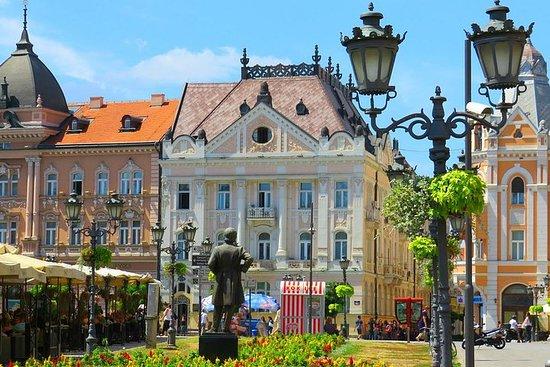 Excursão privada Mosteiro Novi Sad...