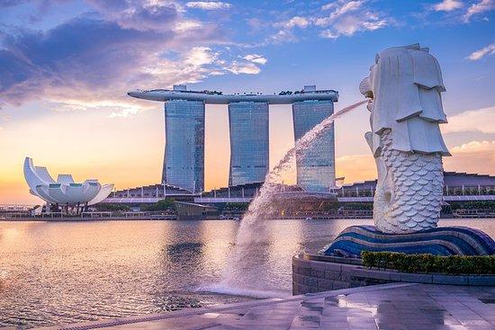Geburtstagsfeierreise nach Singapur