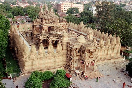 Glimpses of Wildlife & Footstep of Gandhi Gujarat Tour (10 Days)