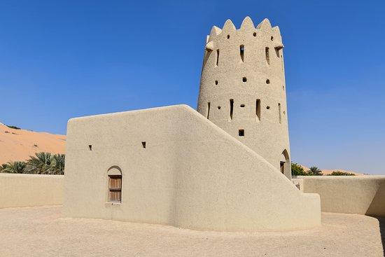 Liwa Oasis 사진