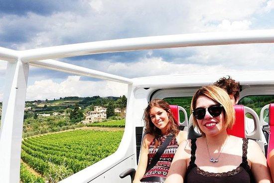 Excursão privada ao vinho em Van...