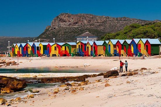 Excursion d'une journée complète au Cap de Bonne Espérance et aux...