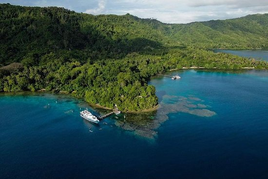 4 Day Diving Tour in Milne Bay in...