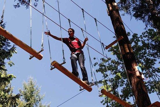 Maple Ridge Aerial Adventure Course