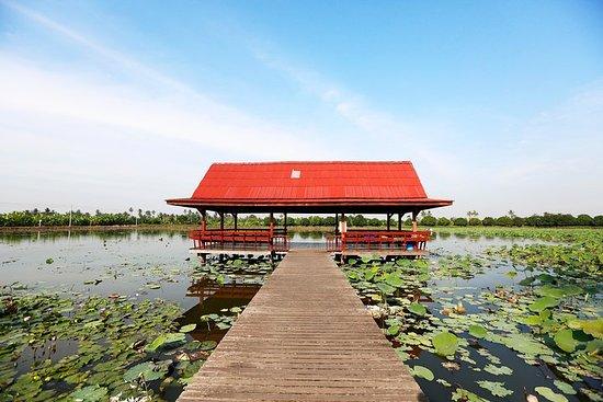 馬哈薩瓦特運河與鄉村農場的私人之旅