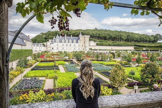 Day trip from Paris : Fairytale Loire...