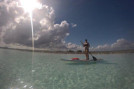 Laguna Bacalar的日出体验式站立式冲浪之旅