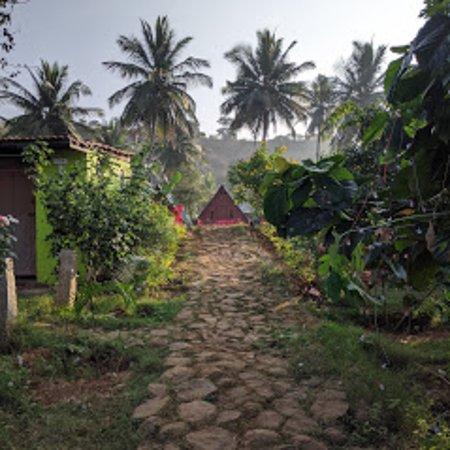 Tree House - Εικόνα του Wild Valley Adventure Retreat, Μπανγκαλόρ - Tripadvisor