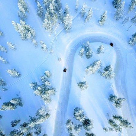Frozen Ring Circuit