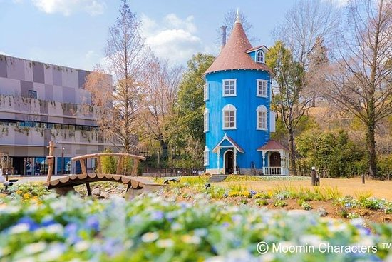 Kawagoe & Moomin Valley Park Private Tour with Driver