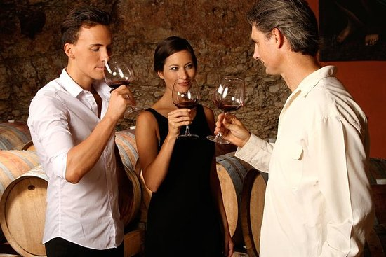 Wine and Food Tour in the Lucca...